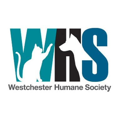 Thank you letter from Westchester Humane Society